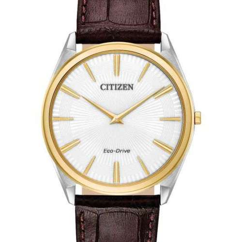 Citizen Men's Stletto Watch