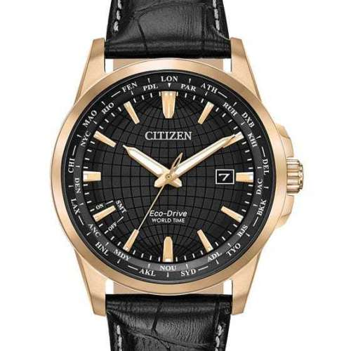 Citizen Men's World Time Perpetual Watch